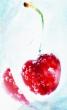 Kirsikka képe